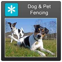 Home Dog Pet Fencing Blue X Norm